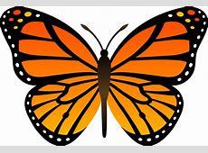 Orange Monarch Butterfly Vector - Free Clip Art Free Clipart Downloads Butterflies