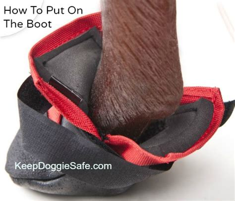 ultra paws rugged boots ultra paws durable rugged boots keepdoggiesafe