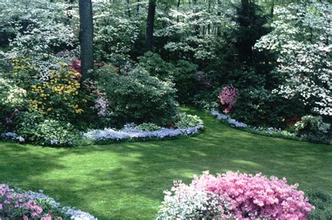 landscaping my backyard a true southern garden landscaping ideas pinterest