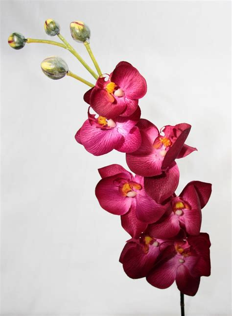 artificial silk phalaenopsis orchid single stem just