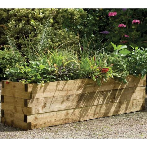 forest garden caledonian raised vegetable plant bed