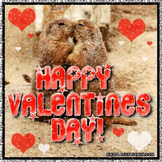 happy valentines day animals animals images graphics pictures for