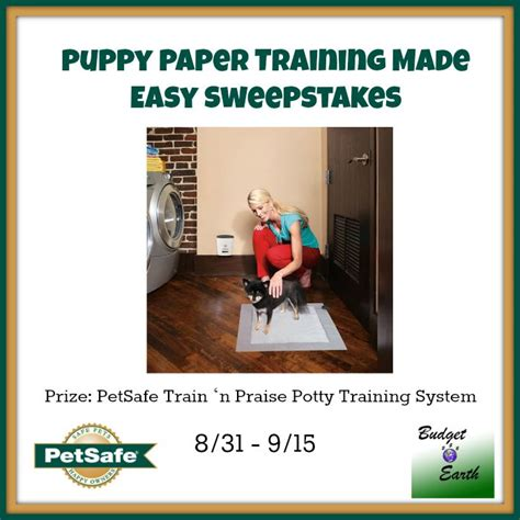 Easy Sweepstakes - puppy paper training made easy sweepstakes