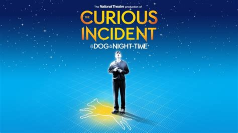 The Curious Incident Of The In The Time Essay Questions by What The Curious Incident Reveals About The Experience