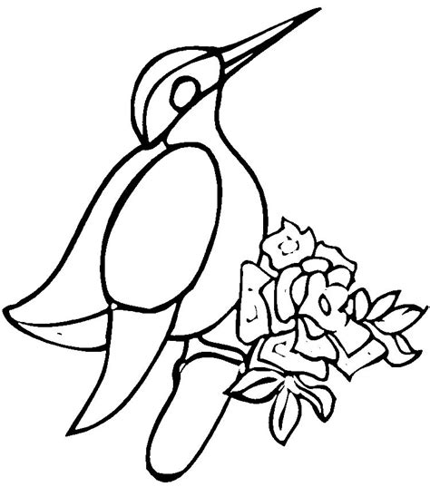 kookaburra coloring page free kookaburra colouring pages cliparts co