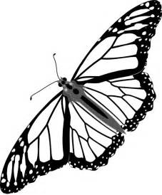 Monarch Butterfly Outline by Monarch Butterfly Bw No Shadow Clip At Clker Vector Clip Royalty Free
