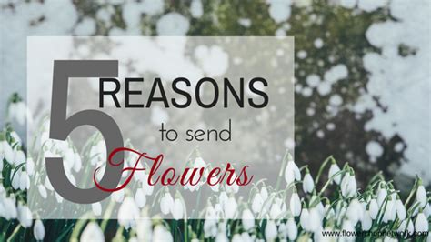 Reasons To Send Flowers by 5 Reasons To Send Flowers January 18
