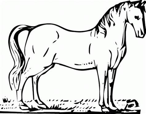 mewarnai gambar kuda tak nyata contoh anak paud