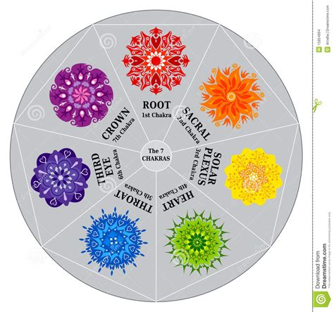 7 chakras color chart with mandalas stock images image