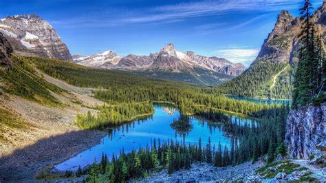 colorado mountain rocky mountain national park information facts tiverton foundation