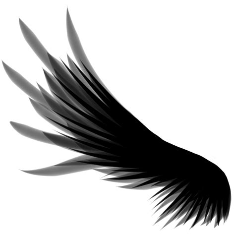 free wing download free clip art free clip art on