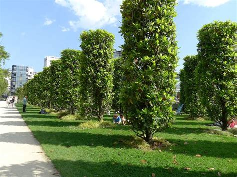 Parc Andre Citroen by Parc Andr 233 Citro 235 N Attractions In Javel