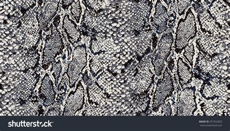python pattern html seamless snake python textile pattern stock vector