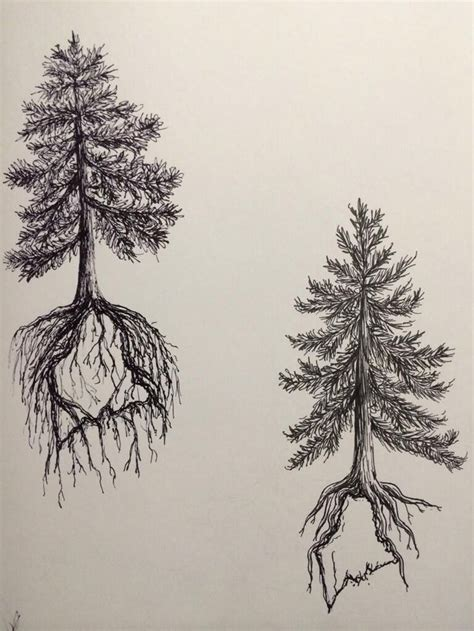 tree roots tattoo pine tree state design two by ramble inthe roots 19