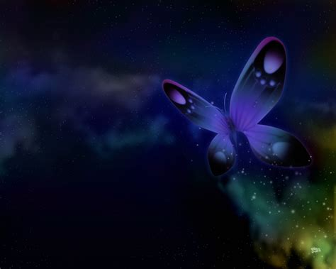 butterfly wallpaper for desktop with animation butterfly wallpaper for desktop funny animal