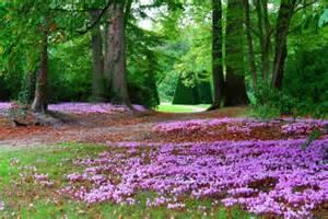 yvelines vall 233 e de chevreuse jardins parc romantique