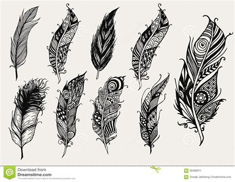 set of hand drawn rustic decorative feathers stock vector