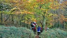 slievebloom equestrian dublin s doorstep itinerary 3 days ireland com