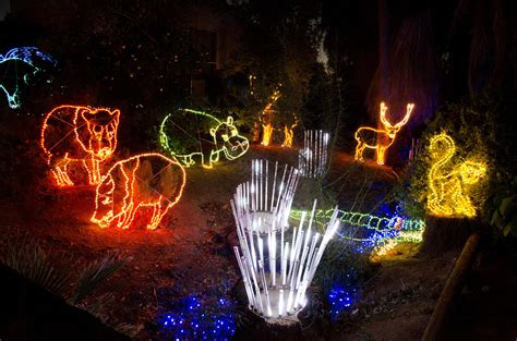 things to do with christmas lights zoolights it s amazing lights at the zoo things to do in with