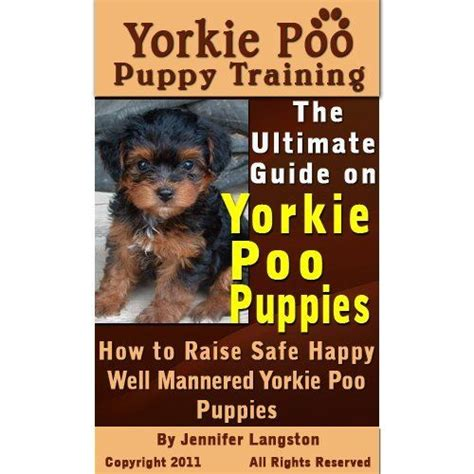 how to a yorkie poo yorkie poo puppy the ultimate guide on yorkie poo puppies how to raise safe