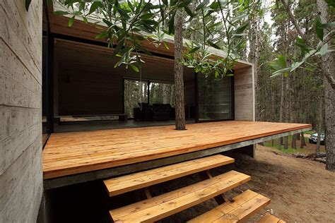 Jd House by Forest Jd House By Bak Architects In Argentina
