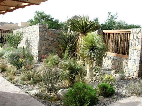 Desert Garden by Centennial Museum Exhibits