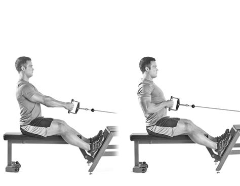 seated cable row the 23 best biceps exercises early to rise