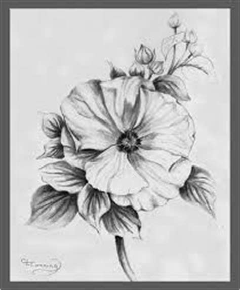 sharon tattoo designs of hibiscus and drawings on