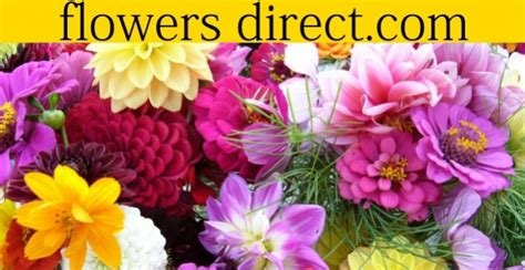 Flowers Direct by 12 Discount At Flowers Direct
