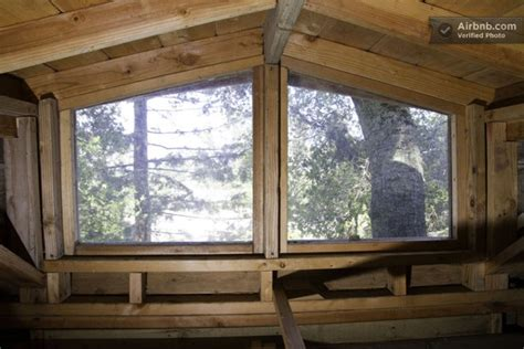 tree house windows would you spend a night in this treehouse