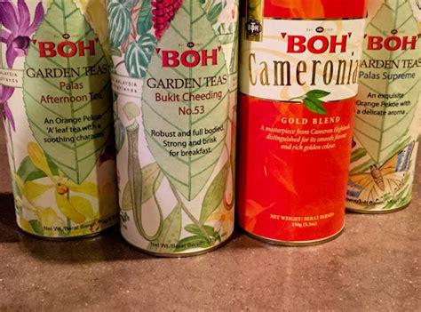 Yogi Detox Tea Test by Tea Review My Tea Vault