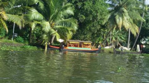 atdc house boat atdc house boat picture of atdc house boat alappuzha tripadvisor