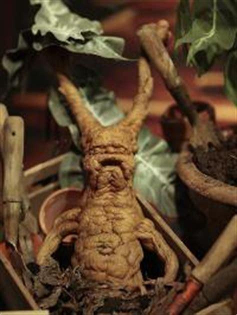 mandrake monster wiki fandom powered by wikia