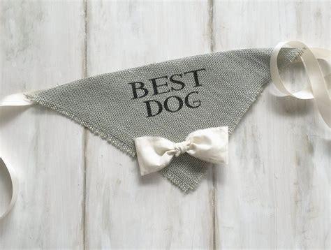 Best Dog   Gray Wedding Dog Bandana with Bowtie   Grey