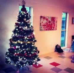 aldimum the perfect aussie christmas aldi style