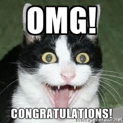 Funny Congratulations Meme - image gallery omg excited cat