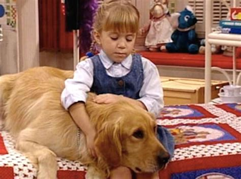 comet full house 27 most precious pets in tv history page 2 tv fanatic