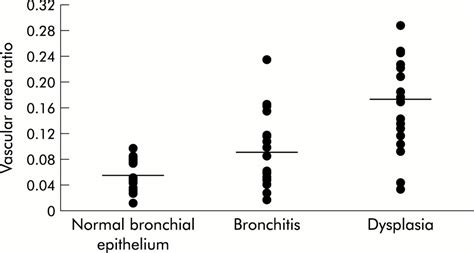 vascular pattern meaning subepithelial vascular patterns in bronchial dysplasias