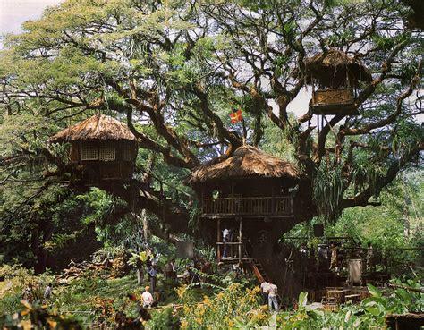 tree house movie swiss family robinson treehouse movie set flickr photo sharing