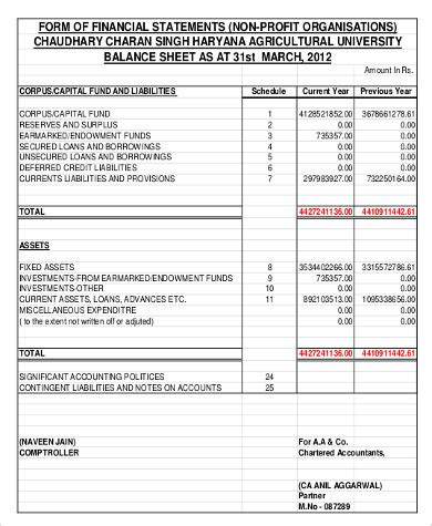 Non Profit Balance Sheet Template by 28 Balance Sheet For Non Profit Template Non Profit