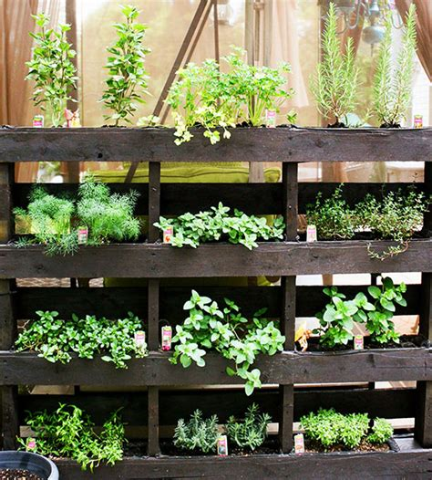 Vertical Herb Garden Pallet Garden Finance Vertical Garden Ideas Garden Finance