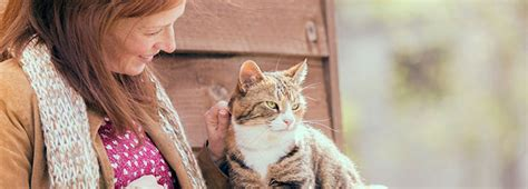 how to rehome a learn how to rehome a pet from us rspca