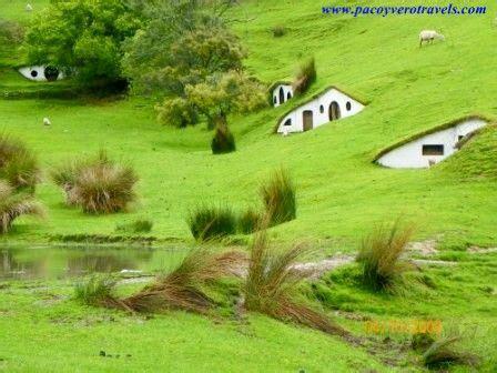imagenes hermosas de nueva zelanda 77 best maravillas de nueva zelanda images on pinterest