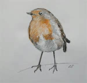 My Favourite Bird Sparrow Essay by Robin Drawings Agnesandcora