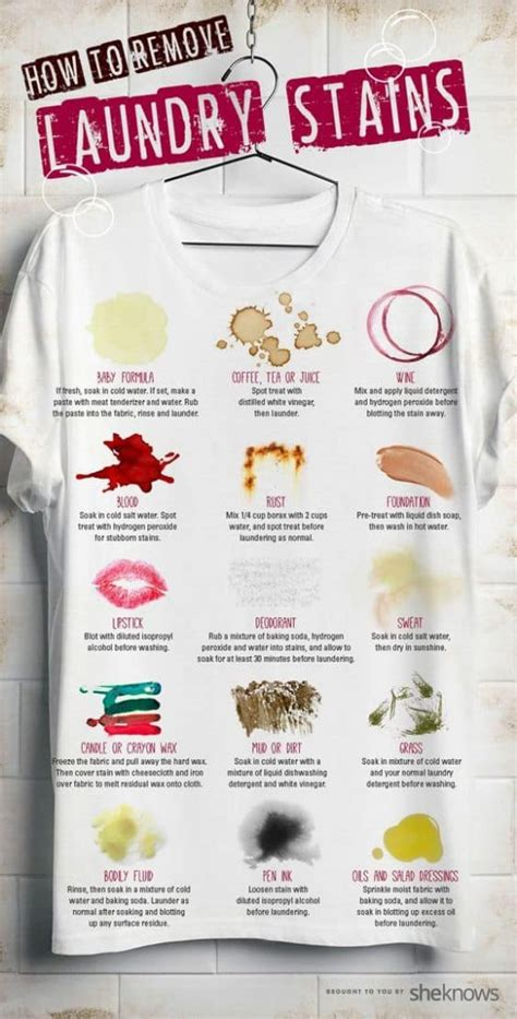 stain removal guide all the tips and tricks the whoot