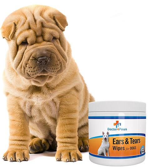 dogs with skin dogs with wrinkles a guide to caring for wrinkly dogs the happy puppy site
