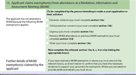 section 13 a finding a mediator and what next fnf both parents matter