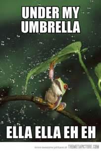 Funny Memes Rain Frog