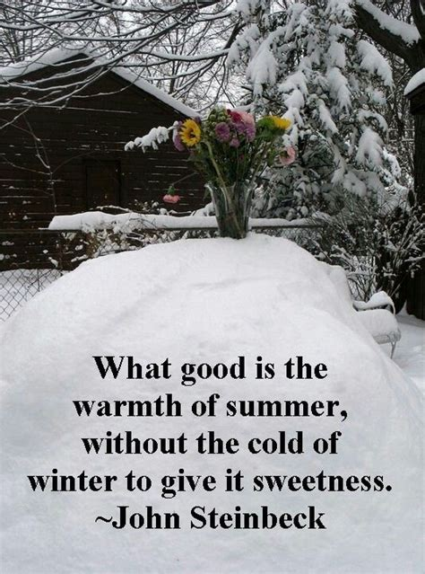 winter quotes season sayings positive famous fav