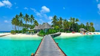 Tropical paradise beach island sea palms hd wallpaper